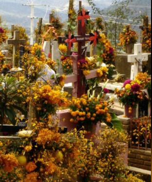 CELEBRACIÓN DE DÍA DE MUERTOS EN AYUTLA, OAXACA, MÉXICO. Presentación Power Point