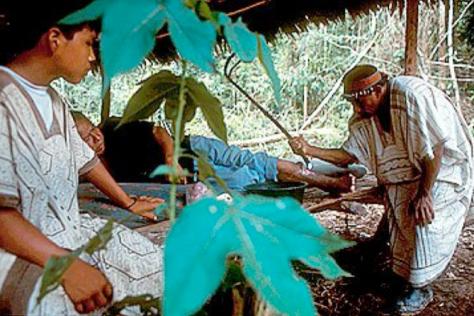 Chaman de ayahuasca