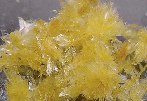 Cristales DMT