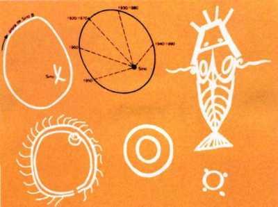 dogones dibujos orbitas de Sirio y dios pez Gimenez02_07