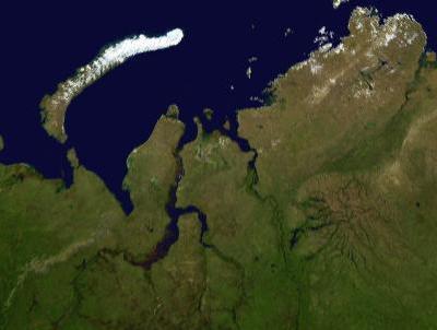 Peninsula de Yamal Siberia Rusia