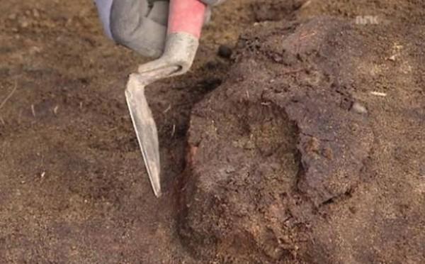Hallan craneo de 8000 años de antigüedad que aún conserva su cerebro