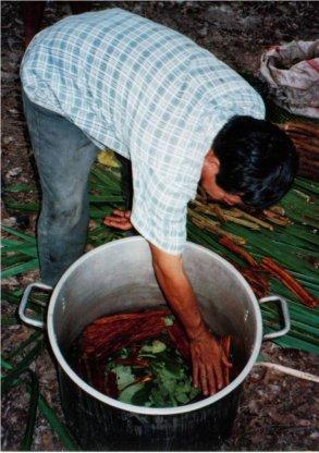 Chaman preparando ayahuasca