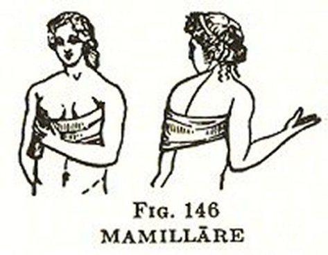 mamillare
