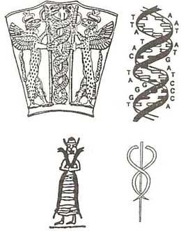 Dioses sumerios y ADN