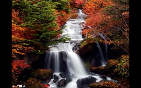 Paisaje arroyo otoño