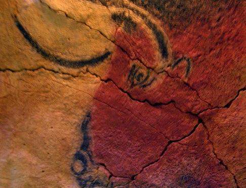 Los oxiuros (lombrices intestinales) comparten material genético con los seres humanos