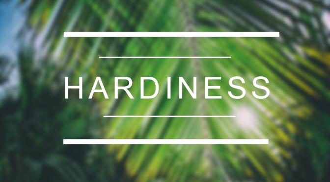 Hardiness ¿Cómo convertir las situaciones estresantes en oportunidades?