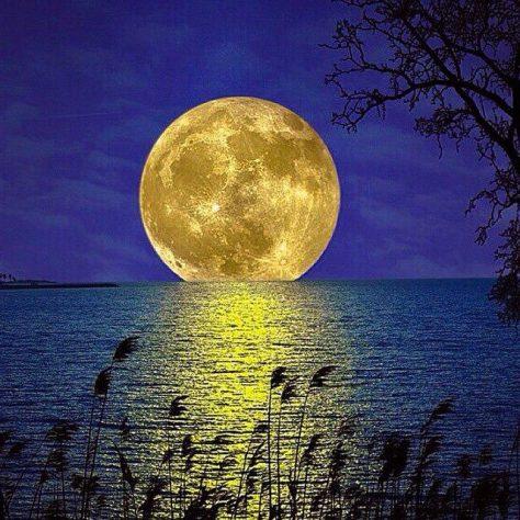 Luna llena amarilla entrando al mar