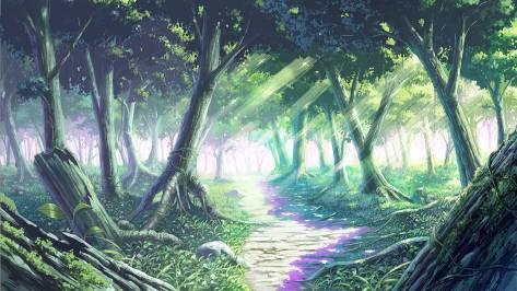 sendero amameciendo en el bosque