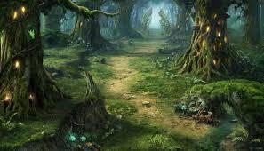 sendero en el bosque dia