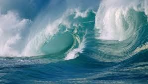 Tsunami de amor.