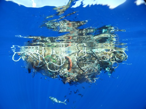 In the middle of the Pacific Ocean, a 200lb. mass of drift net and rope has tangled together slowly over time. Though fish and crabs live successfully in and around the debris, other wildlife like turtles, sea lions and sharks get tangled in the ropes and die of starvation.