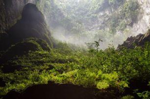 selva-dentro-cueva