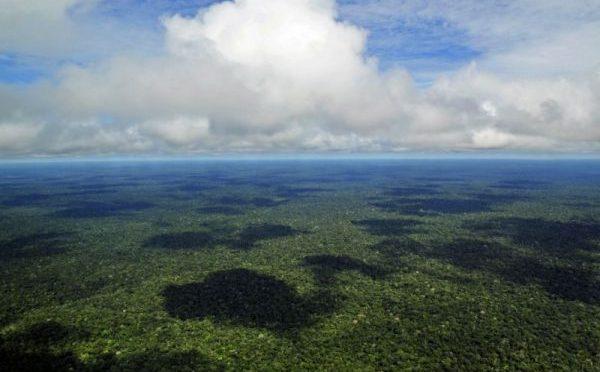 CALENTAMIENTO GLOBAL, FUTURO NEGRO DEL AMAZONAS Y DEL PLANETA